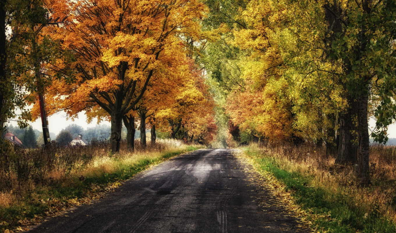 amazing, осень, природа, телефон, категории, desktop, гора, лес, туры,