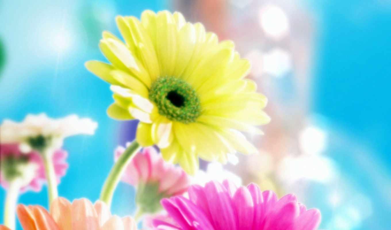 life, прекрасна, удивительна, если, жизни, rifmnet, афоризмы, пускай, статусы, смотреть,