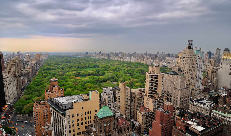 york, new, ,