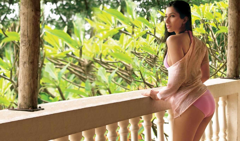 bollywood, sophia, chaudhary, поза, sexy, sophie, актриса, модель, indian,