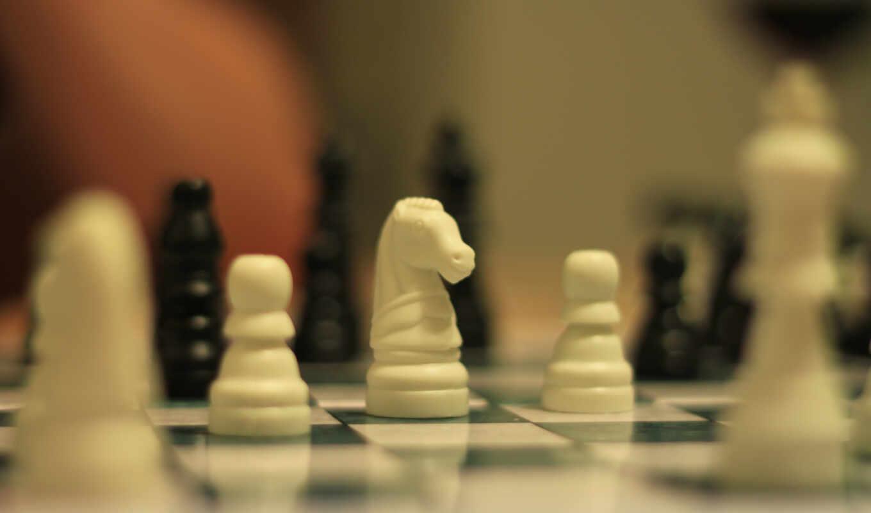 chess, king, warcraft, рисунок, club, website, меч