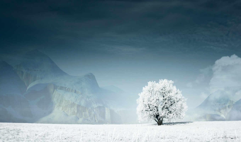 дерево, снег, горы, зима, white, guardian, картинка, lonely, небо, save, скачивания, разрешением, desktop, ней, правой, выберите, картинку, мыши, кнопкой,