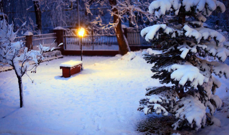 снег, winter, лампа, природа, двор, снегу, деревья, дерево, ёль, зомби,