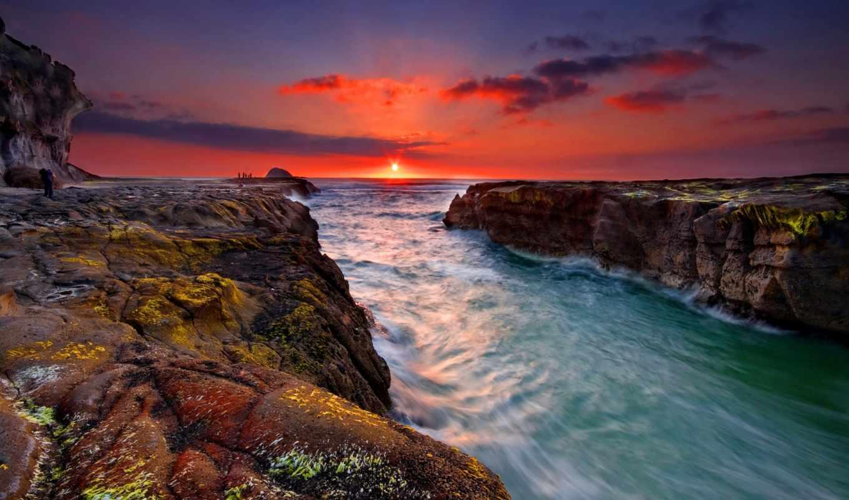 природы, природа, красавица, зеландии, река, впадающая, ocean, новой,