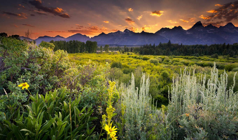 usa, природа, grand, landscape, teton, wyoming, national, картинка, park,