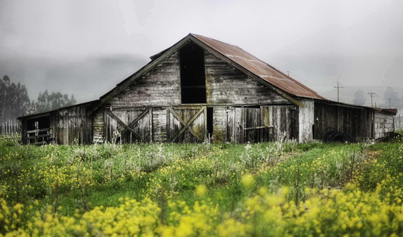 dom, пейзаж, грустный, растения, priroda, заброшенная,