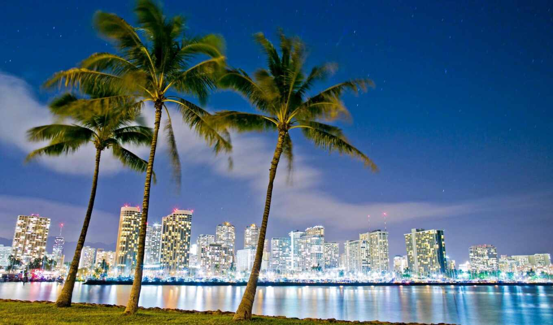 hawaii, funart, гонолулу