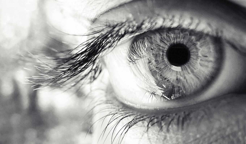 глаз, взгляд, ресницы, зрачок, чб, чёрно,