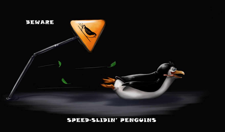 rad, пингвин, мб, slide, блог,