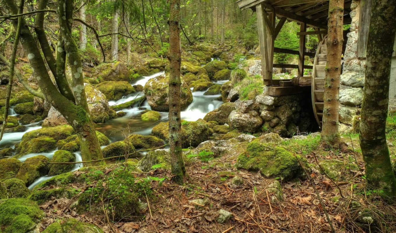 mill, лес, природа, water, скалы, деревья, река,