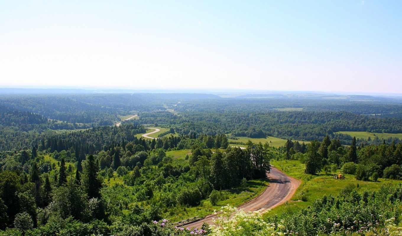 distance, лес, природа, trees, oblaka, небо, сверху, зелёный, пустота, скалы, landscape,