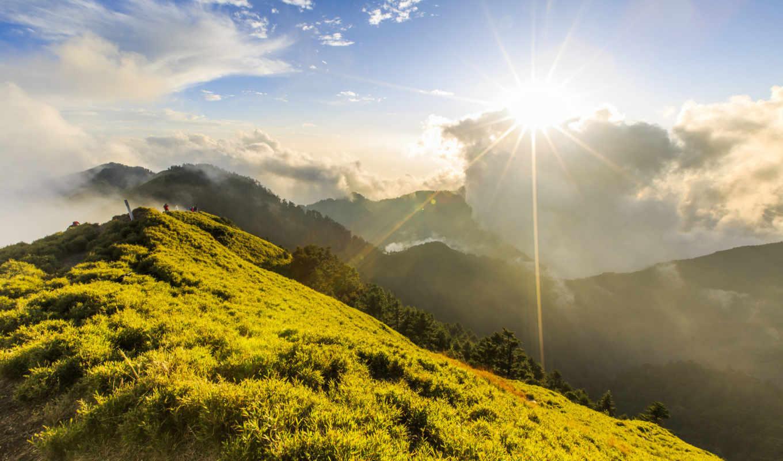 трава, sunny, природы, trees, id, oblaka, вивасан,