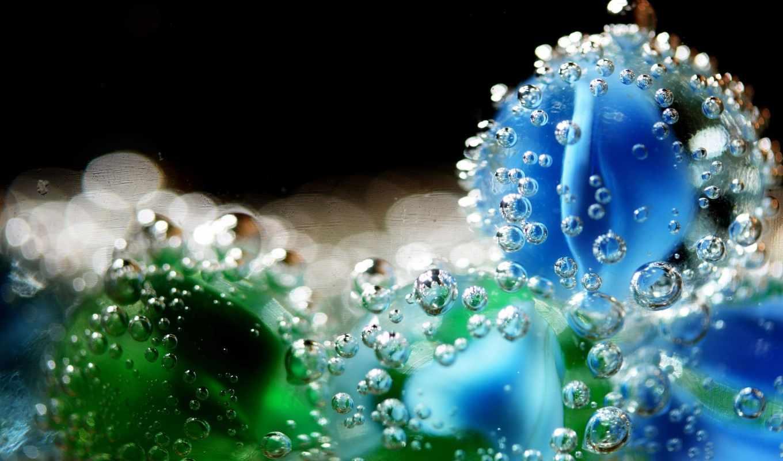 макро, agua, gotas, para, высококачественные, las, fondos, камли, пузыри,