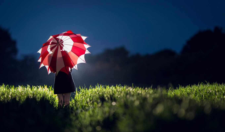 девушка, зонт, силуэт, вечер, трава, лес