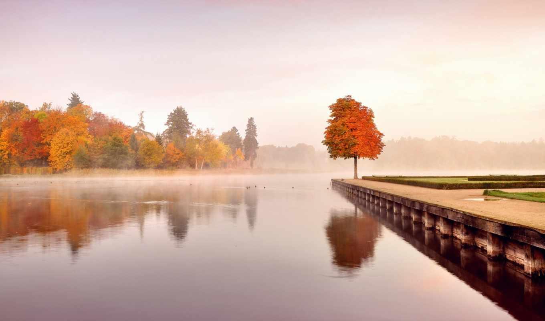 природа, осень, река, клен, набережная, туман,