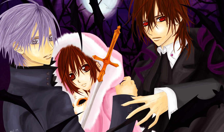 anime, vampire, рыцарь,