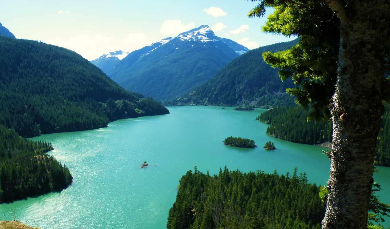 картинка, природа, washington, landscape, usa, озеро, горы, дерево, ствол,