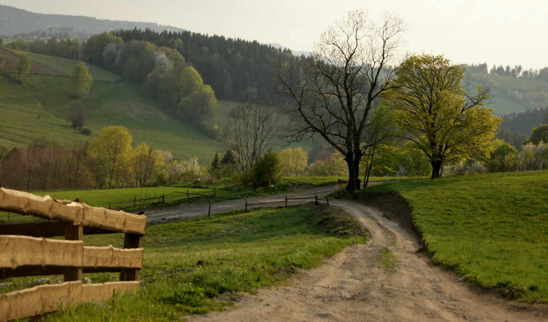 дорога, забор, landscape, лес,