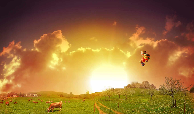 sun, природа, rising, desktop, поле, природы, утро, изображение,