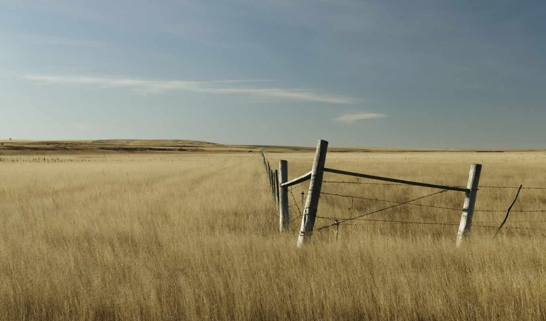 забор, поле, free, провод,