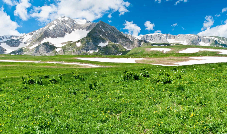 природа, горы, landscape, красавица, трава,