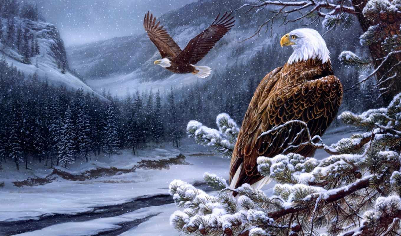 eagles, живопись, розмарин, лысый, река, дух, wild, milette, winter, орлан,
