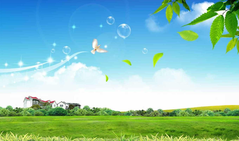 dove, and, field, over, wallpaper, bubbles,