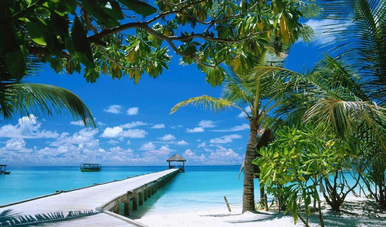 maldives, tourist, москва