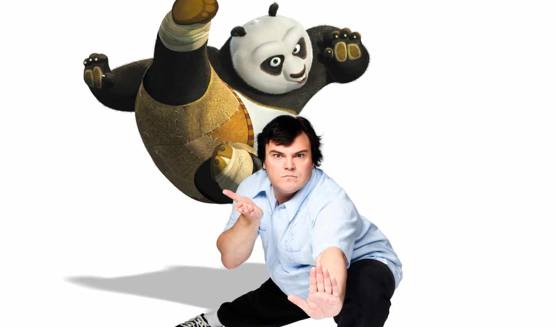 кунг, панда, boo, голос,