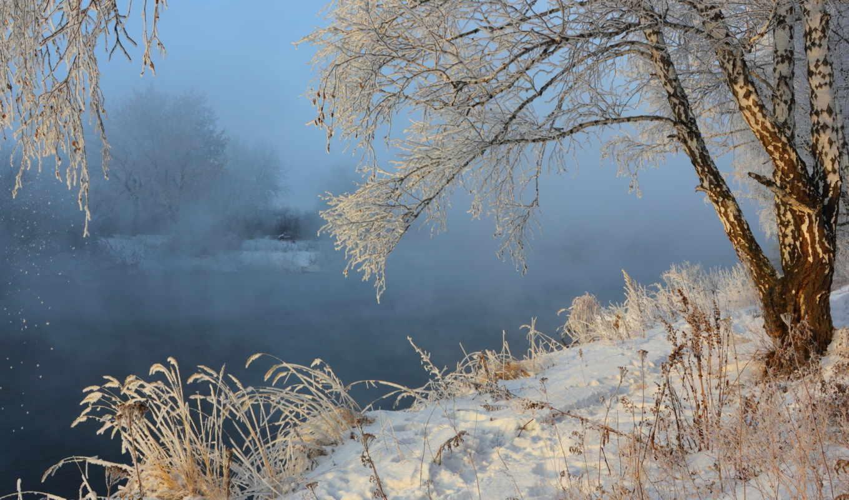 зима, снег, туман, природа, пейзаж, береза, река,