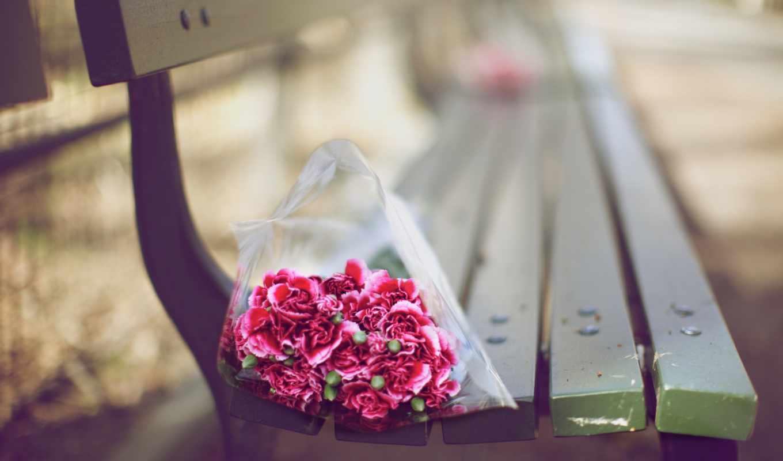 букет, фокус, цветы, бутон, осень лавка, зелёный