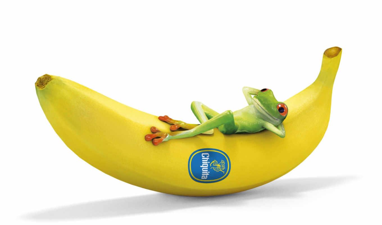 cartoon, лягушка, funny, анимация, банан, спать,