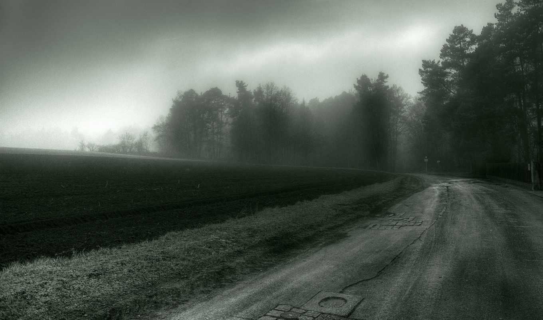 дорога, картинка, деревья, лес, darkness, поле,