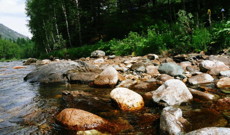 ,камни, берег,река,лес,