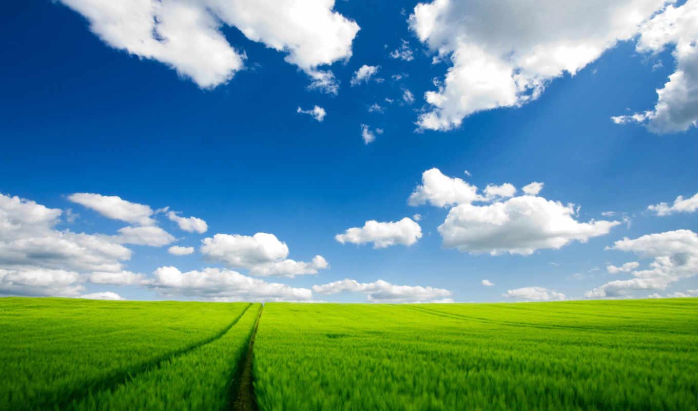 field, world, giá, and, sắt, đường, vận, chuyển, cartridge, wallpaper, green, ngày, загрузить, through, полосы, катинки, этого, сейчас, america, north, природа, road,