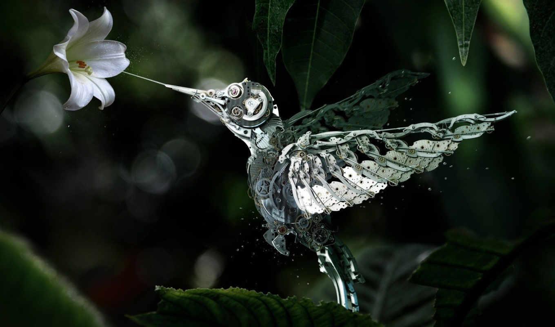 robot, механизм, цветы, колибри, роботы, янв, фэнтези,