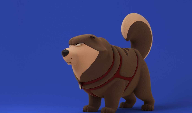 собака, минимализм, собака, minimalizm, пейзаж, david, star, animal, ошейник, war, животное