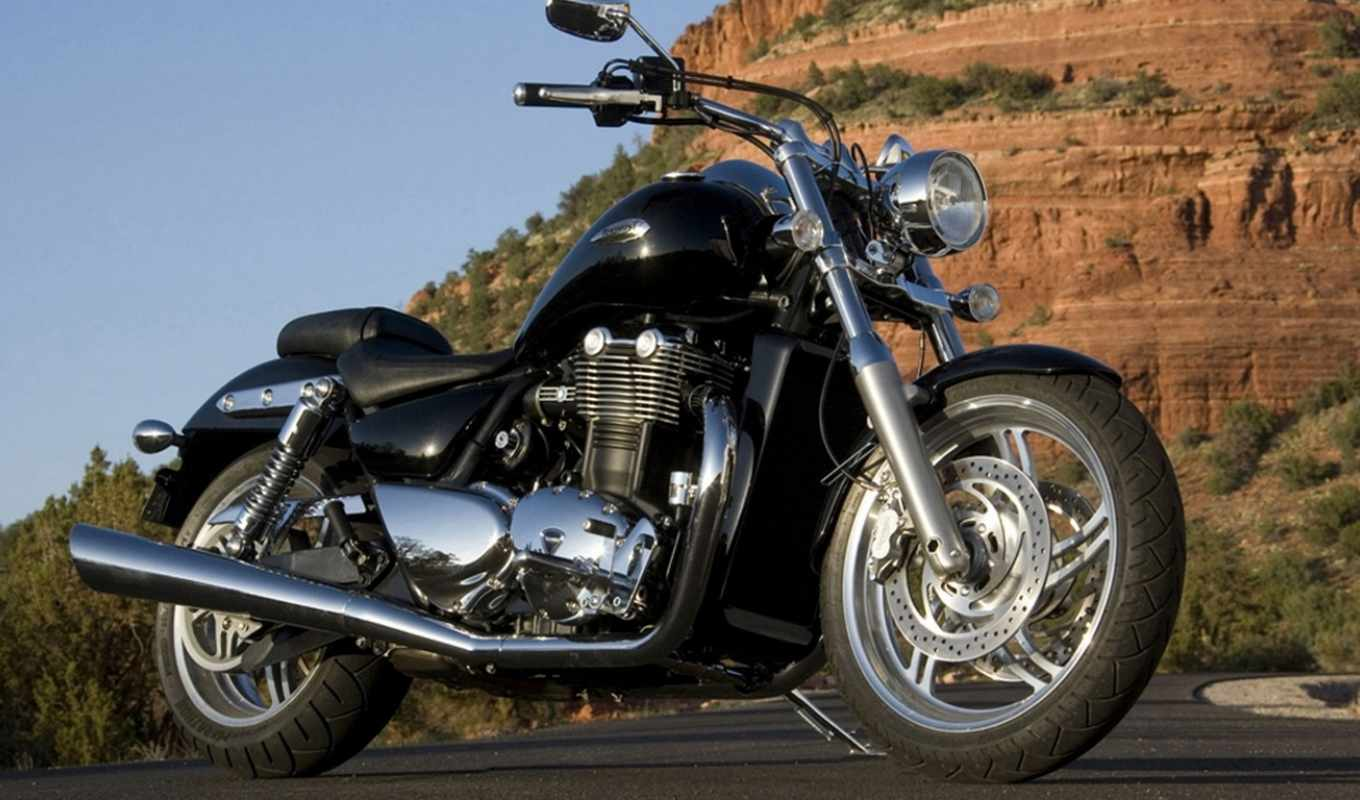 thunderbird, triumph, the, twin, cycle, parallel,