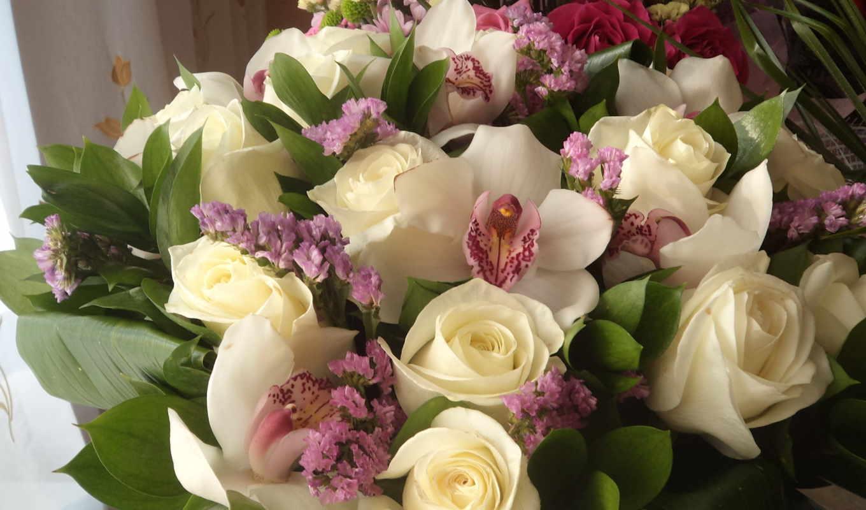 розы, цветы, букеты, герберы, white,