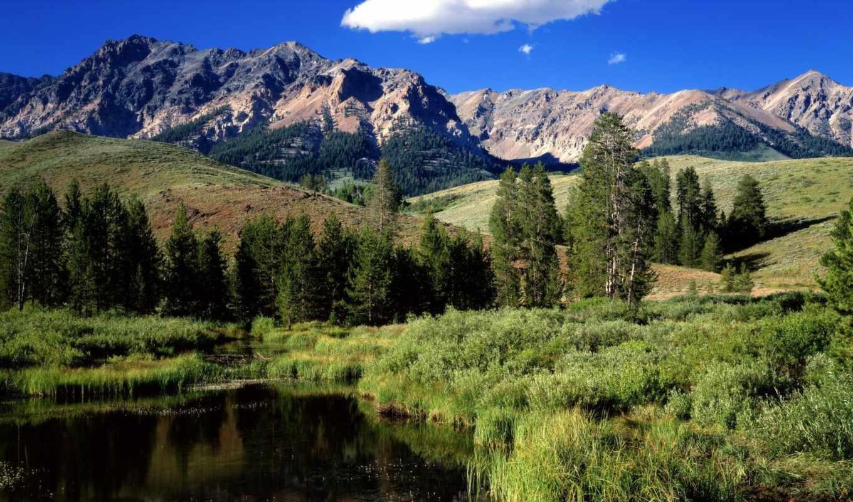 mountains, горы, река, idaho, лес, park, landscape, national, usa, картинка, гора,