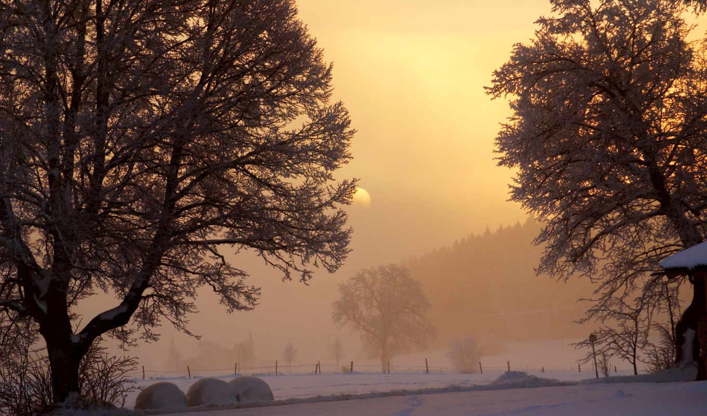 winter, рассвет, взгляд, деревя, sun, снег, небо, утро, просвет,