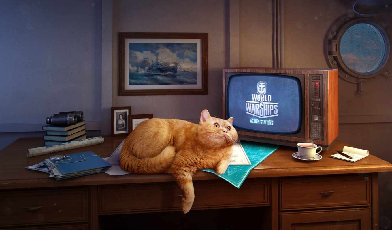 кот, youtube, tabby, global, world, warship, три, канал, pet, even, let