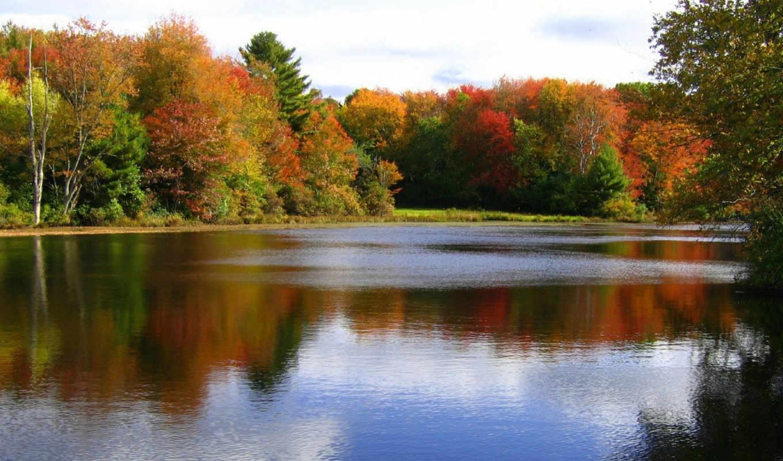 осень, октябрь, природа, октября,