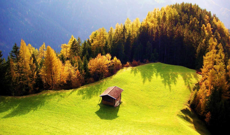 lodge, лес, house, осень, поляна, одинокий, sun, сопка, дома, лесу,