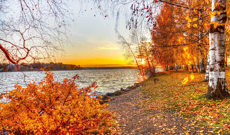 природа, осень, озеро, листья, пейзаж, деревья, закат, эти,