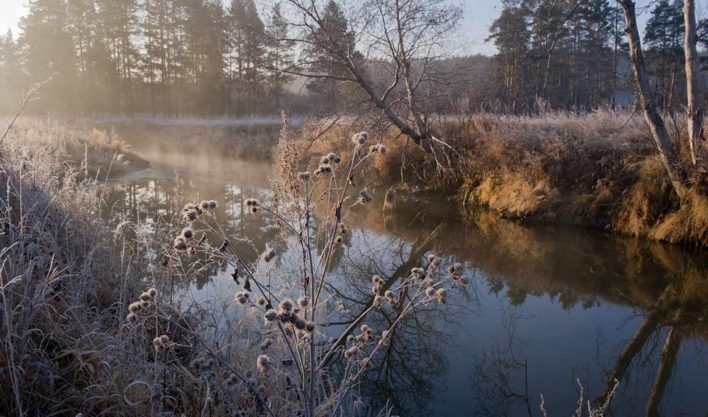 осень, иней, травы, река,