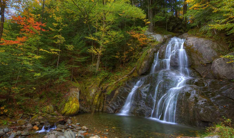 деревя, природа, лес, камни, пасть, река, водопад, листья, мох, дорога,