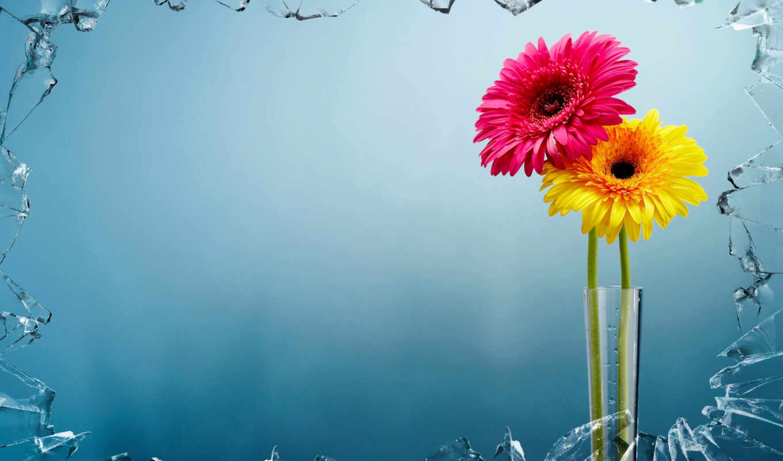 gullar, цветы, мелодия