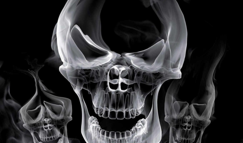обои, череп, черепа, обоев, фото, скачивают, сейча