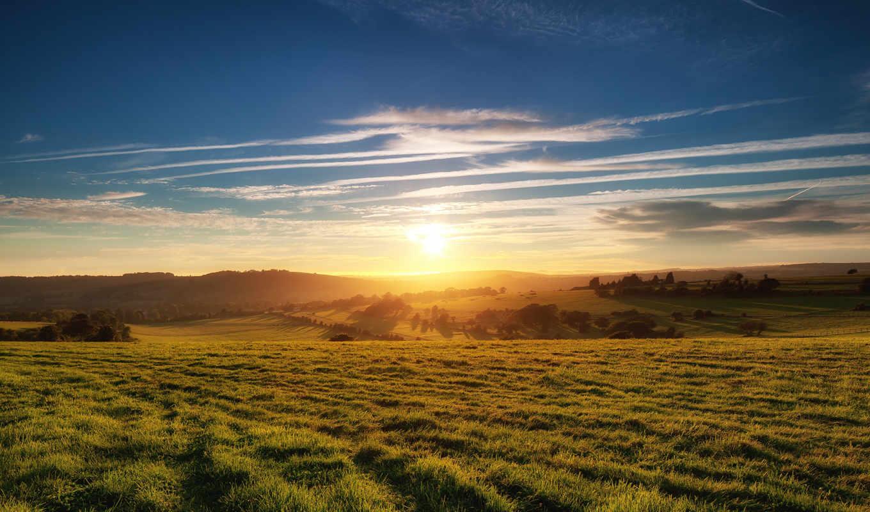 поле, закат, солнечный, природа, простор, раздолье, зеленом, full, картинку,